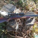 ハンターになりたい・猟師初心者だというあなた、狩猟体験に参加してみよう
